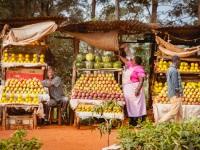 Fruit Sellers, Kenya