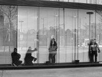 Men at Work, Vienna