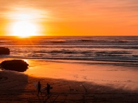 Surfers, Port Waikato